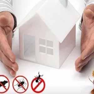 افضل طرقة للوقايه من الحشرات بالمنزل